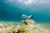 pic of sea-turtles  - Underwater photo of young woman snorkeling and swimming with Hawksbill sea turtle - JPG