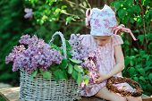 pic of dress-making  - adorable child girl in pink plaid dress making lilac flower wreath in spring garden - JPG