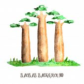 pic of baobab  - Three watercolor baobab trees with green grass growing somewhere in Africa - JPG