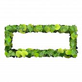 foto of quadrangles  - Beautiful graphics made with green leaves on a gradient background - JPG