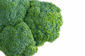 foto of anti-cancer  - Isolated head of farm fresh broccoli with young unopened buds or florets for a healthy cooking ingredient over an off white colored background viewed from above - JPG