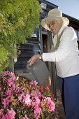 pic of elderly woman  - Retired lady using the watering can to water flowers - JPG
