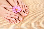 Care for beautiful woman skin and nails. Pedicure and manicure at beauty salon. Woman legs, hands wi poster