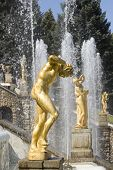 stock photo of samson  - Fountain in Petrodvorets (Peterhof) St Petersburg Russia.