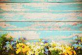 Flowers Blossom On Vintage Wooden Background, Border Frame Design. Vintage Color Tone - Concept Flow poster