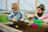 Eco Garden. Eco Garden Workers Of Father And Son. Eco Garden Cultivation. Family Works In Eco Garden poster