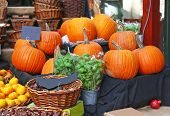 Halloween Pumpkins And Other Fruits At The Borough Market In London City United Kingdom poster