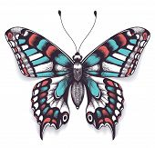 Beautiful Tattoo For Your Chest. Machaon Butterfly. Tropical Realistic Butterfly With Shadow. Female poster