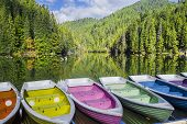 Colorful Boats Docked On A Mountain Lake, Green Forest Mirroring In Lake. Natural Dam Lake In Forest poster