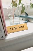 A Closeup Image Of Office Shelf With A Name Of Lady Boss On It poster