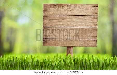 wooden sign in summer forest, park or garden poster
