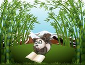 Illustration of a panda reading at the hilltop with bamboos