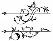pic of scroll design  - Floral Scroll element for design vector illustration - JPG