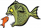 Bully Fish poster