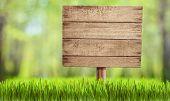 picture of grass  - wooden sign in summer forest - JPG