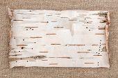image of rude  - Birch dry bark on rude burlap background - JPG
