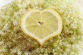 image of elderberry  - lemon shaped into heart on elderberry flower - JPG