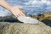 pic of pearl-oyster  - Sea shell with pearl on the sandy beach - JPG