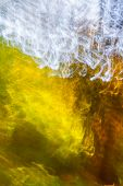 picture of klamath  - abstract background formed by trees on a moving camera - JPG