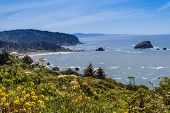 foto of klamath  - Beach at the California Coast. Del Norte State Park area