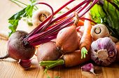 picture of root vegetables  - Assorted types of root vegetables - JPG