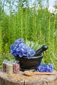 stock photo of hyssop  - mortar with blue cornflowers and sage hyssop grass on background herbal medicine