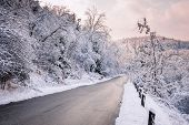 stock photo of slippery-roads  - Winter road through icy forest covered in snow after ice storm and snowfall - JPG