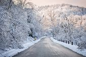 picture of icy road  - Scenic winter road through icy forest covered in snow after ice storm and snowfall - JPG
