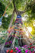 image of holy-spirit  - Three fabric color wrap the old tree the belief in thailand Holy tree with spirit inside in Asian - JPG