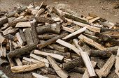 foto of firewood  - Wood skin that cut into firewood for cooking - JPG