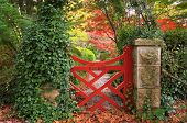 stock photo of gate  - The little red gate at Bebeah Gardens in Autumn - JPG