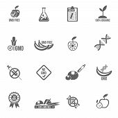 stock photo of genetic engineering  - Gmo icons black set with healthy agriculture genetic danger symbols isolated vector illustration - JPG