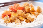 image of paneer  - indian butter chicken with carrots over white rice  - JPG