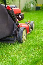 stock photo of grass-cutter  - Lawn mower cutting green grass in backyard - JPG