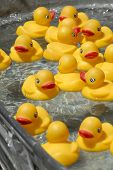 stock photo of duck pond  - The duck pond at the local fair awaits a child.