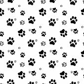 Dog Paw Seamless.cat Paw Dog Paw Kitten Vector Seamless Pattern Wallpaper Background poster