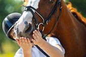 Portrait of  female jockey feeding purebred horse poster