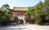 foto of lantau island  - Po Lin monastery on Lantau Island  - JPG