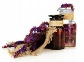 picture of salvia  - Medicine bottles and salvia flowers - JPG