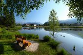 picture of duck pond  - Pond in Alps with clear still water surface and swimming ducks - JPG