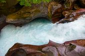 picture of chute  - Water rushes through a chute on Avalanche Creek in Glacier National Park Montana - JPG