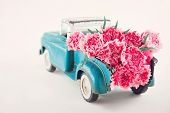 image of carnations  - Old antique toy truck carrying pink carnation flowers - JPG