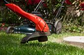 stock photo of trimmers  - Woman is trimming her lawn with electric edge trimmer - JPG
