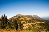 image of olympic mountains  - Hurricane Ridge in the Olympic Peninsula - JPG