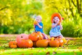 pic of happy halloween  - Happy children at pumpking patch during Halloween little girl in a blue dress boots and cowboy hat and baby boy having fun  on a sunny autumn day