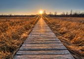 foto of prairie  - A beautiful sunset scene along a wood boardwalk with the boardwalk leading right into the setting sun - JPG