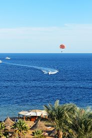 picture of parasailing  - Parasailing and beach of luxury hotel Sharm el Sheikh Egypt - JPG