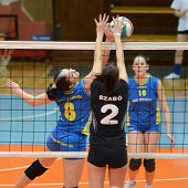 KAPOSVAR, HUNGARY - JANUARY 23: Barbara Balajcza (8) in action at the Hungarian NB I. League woman v