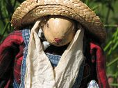 image of polly  - Closeup of Polly scarecrow on a sunny day - JPG