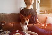 Young Cute Boy Playing Video Game Console Seated On A Sofa With Basenji Dog Puppy Close In Living Ro poster